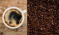 Oggi è la Giornata Internazionale del Caffè